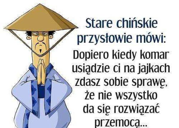 Stare Chińskie Przysłowie O Komarze Mh24pl Humor
