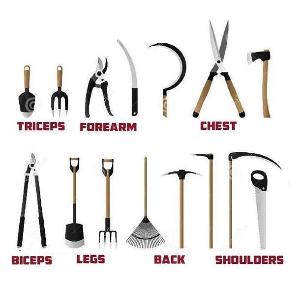 Ogrodowa siłownia