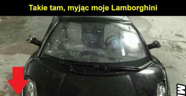 Takie tam, myjąc moje Lamborghini