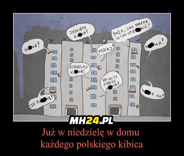 Kibice ;D