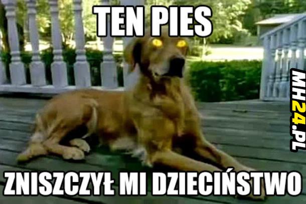 Ten pies zniszczył mi dzieciństwo Obrazki