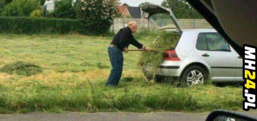 Żryj tą trawę... Obrazki