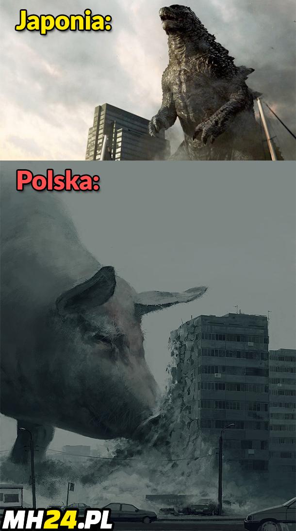 Jaki kraj taka Godzilla