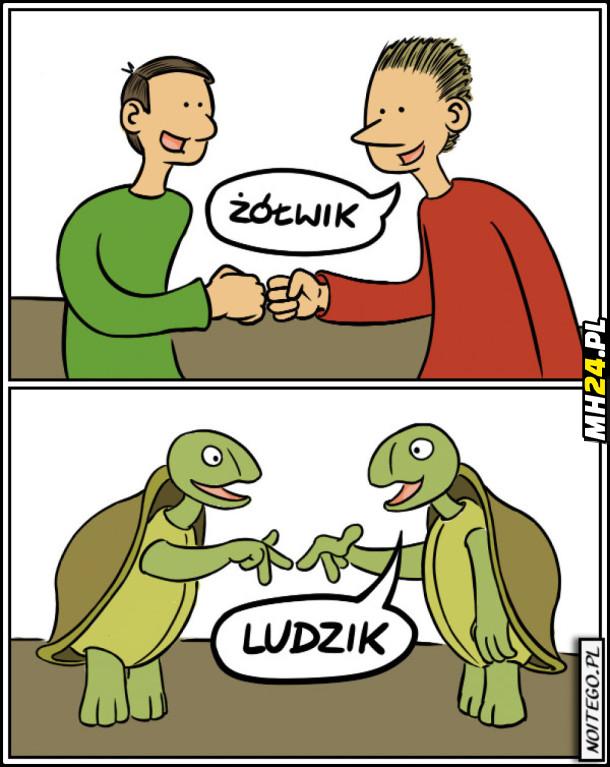 Ludzik]