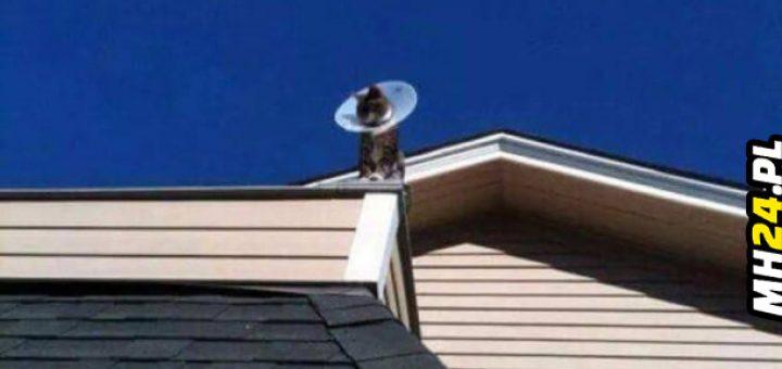 Mój sąsiad kupił sobie nową satelitę Obrazki