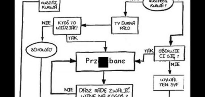 Schemat rozwiązywania problemu Obrazki