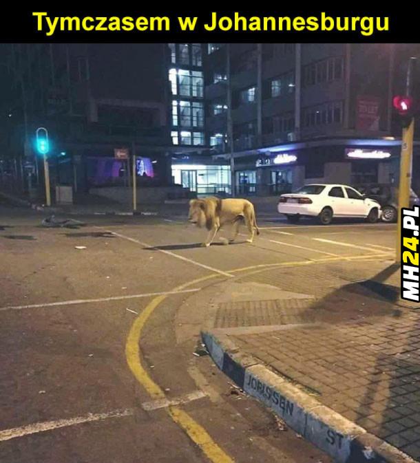 Takie tam w RPA