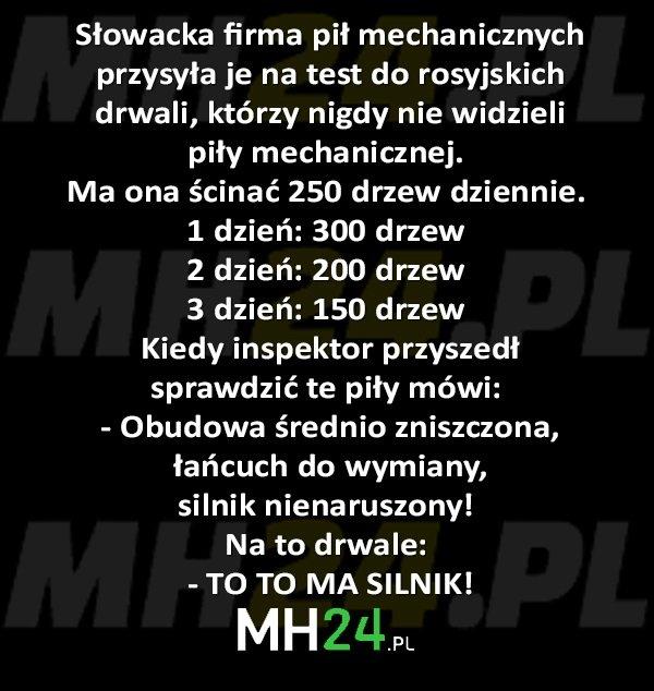 Słowacka firma pił mechanicznych przysyła je na test do rosyjskich drwali... Kawały