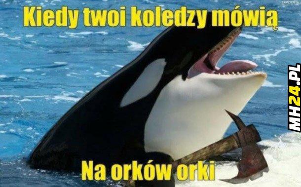 Orki Obrazki