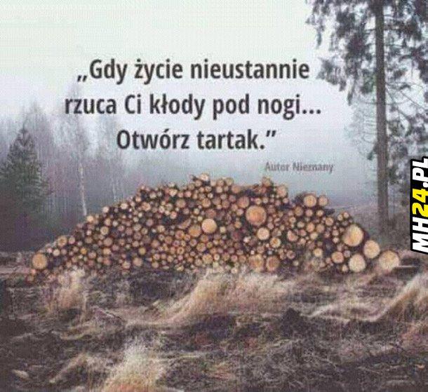 Otwórz tartak Obrazki