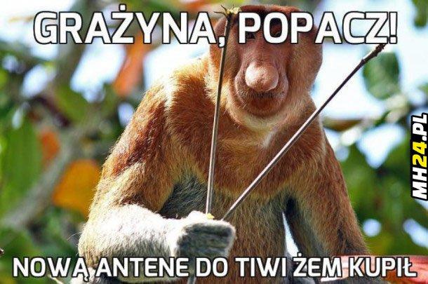Nowa antena Obrazki