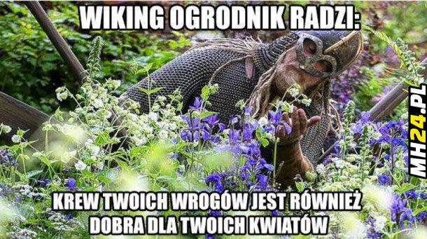 Wiking ogrodnik radzi... Obrazki