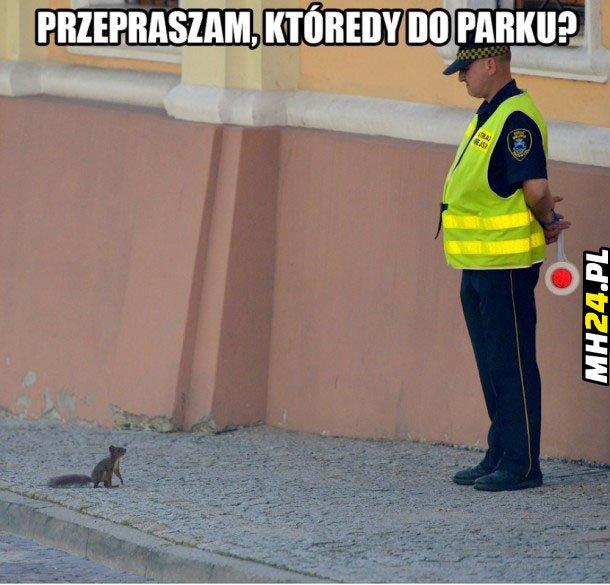 Którędy do parku Obrazki