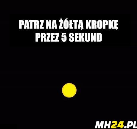Patrz na żółtą kropkę…