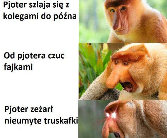Kiedy Pjoter…