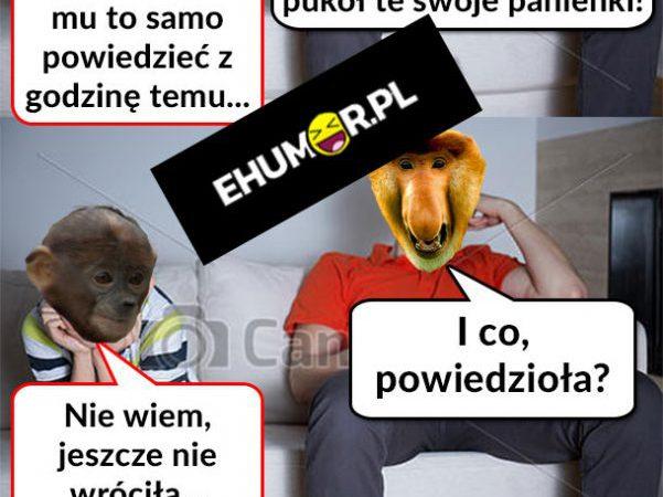 Żona Janusza u somsiada xD