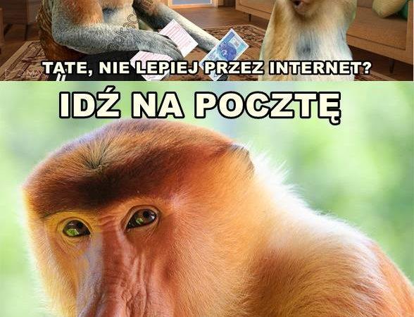 Janusz i przelew xD