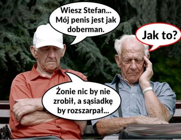 JAK DOBERMAN :D